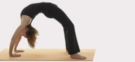 Yoga Asanas Giảm Kg Hiệu Suất Mỗi Ngày